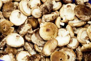 Image Risotto aux champignons et à la Saint-Martin Blonde
